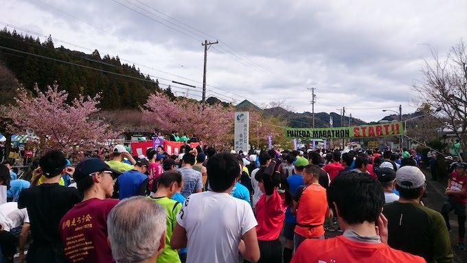 第26回ふじえだマラソン (2019) ハーフマラソンを走りました