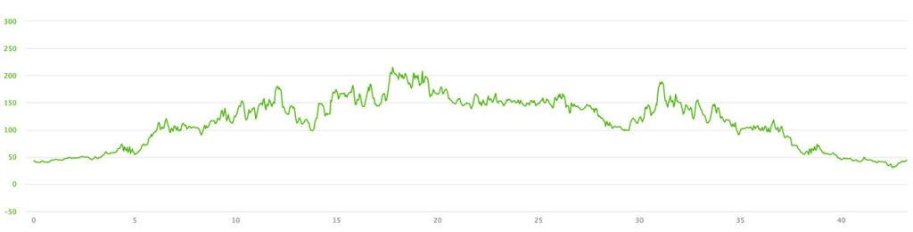 いびがわマラソン高低図